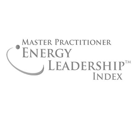 Energy Leadership Master Practitioner - ELI-MP - Institute for Professional Excellence in Coaching - Mathias Fritzen