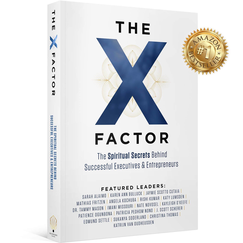 The X-Factor: The Spiritual Success Behind Successful Executives & Entrepreneurs - Mathias Fritzen
